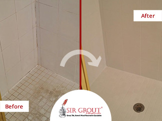 This Vintage Shower in Washington DC was restored to its Former Beauty with a Tile and Grout Cleaning Service
