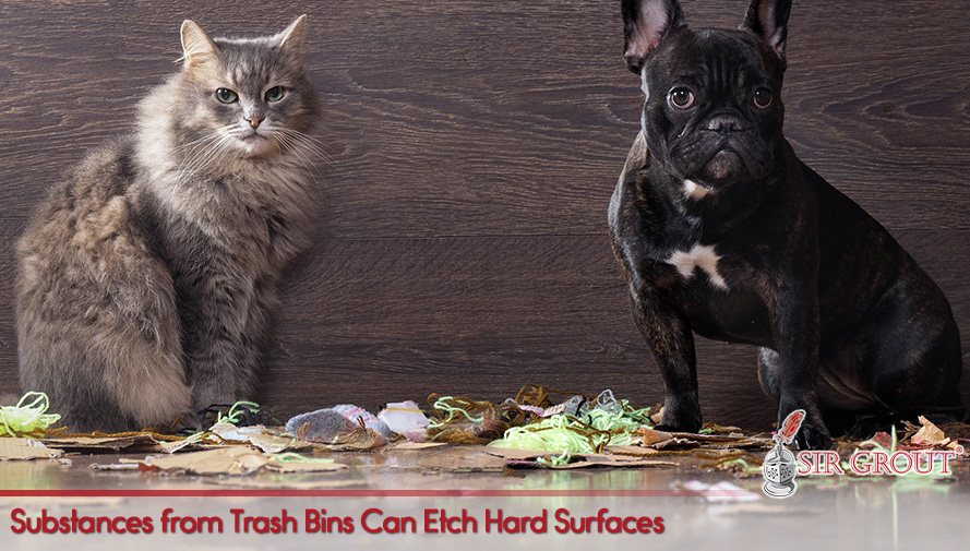 Substances from Trash Bins Can Etch Hard Surfaces