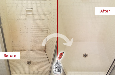 Before and After Picture of a Alexandria Bathroom Grout Sealed to Remove Mold